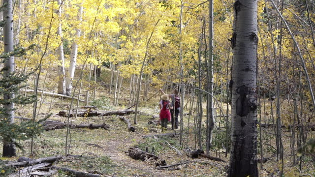 two women hiking - gunnison stock videos & royalty-free footage