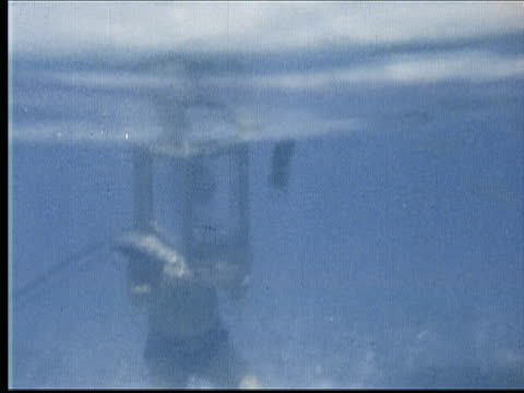 montage two women in bathing suits and man wearing straw hat sit by water drinking tea. woman picks up bottle of soda. underwater shot of boy wearing diving helmet. hand gives him coke bottle with straw. he puts it under helmet and drinks / bermuda - diving helmet stock videos and b-roll footage