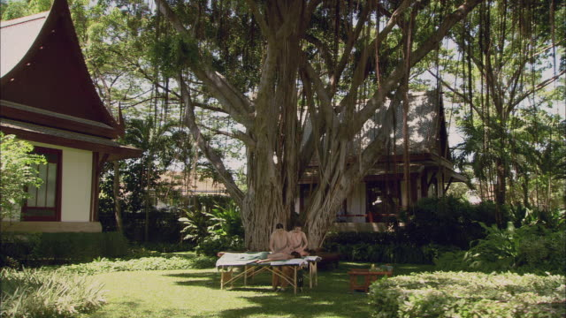 Ws Pan Two Women Massaging Couple Lying On Massage Tables Under Fig Tree In Garden Hua Hin Thailand Stock Footage Video Getty Images