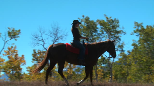 two women on horseback - see other clips from this shoot 1139 stock videos & royalty-free footage