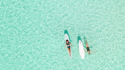 two women on paddle board in lagoon - luxury stock videos & royalty-free footage