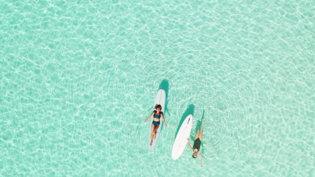 two women on paddle board in lagoon - lagoon stock videos & royalty-free footage