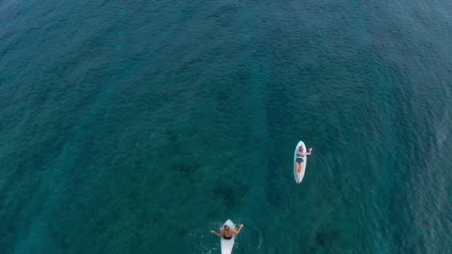 two women on surfboard in ocean - swimming stock videos & royalty-free footage