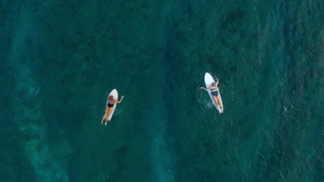 vídeos de stock, filmes e b-roll de duas mulheres em prancha de surfe no oceano - duas pessoas
