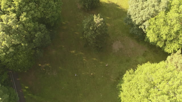 two women playing badminton on the lawn, and the young man join them. top view directly above, aerial drone video - lawn stock videos & royalty-free footage