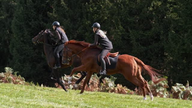 茶色のギャロピング馬に乗っている slo mo 2 人の女性 - 乗馬点の映像素材/bロール
