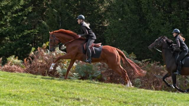 vídeos de stock, filmes e b-roll de slo mo duas mulheres que montam cavalos galopando acima do monte - montar um animal