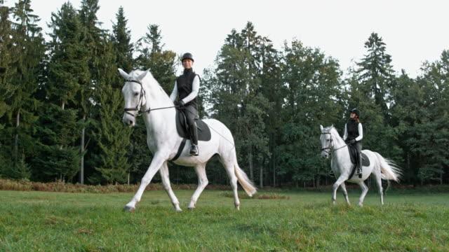 vidéos et rushes de slo mo ds deux femmes équitation trot chevaux à travers le pré - équitation de loisir