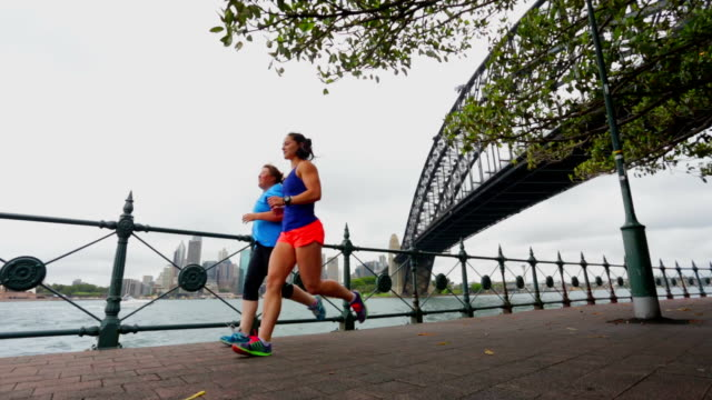 vídeos y material grabado en eventos de stock de dos mujeres corriendo por ejercicio del puerto de sídney - corredora de footing