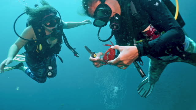 two women scuba divers freeing crab trapped in discarded fishing net - aqualung diving equipment stock videos & royalty-free footage