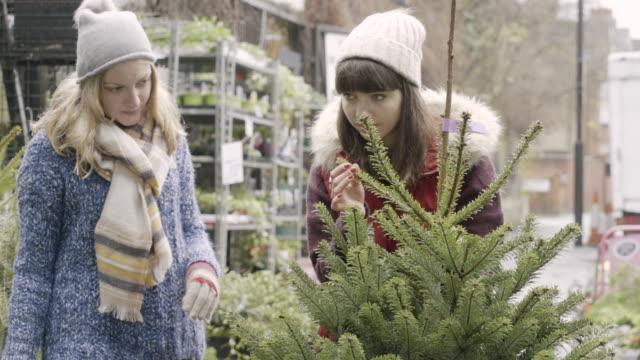 vídeos de stock e filmes b-roll de two women shopping for a christmastree in the garden centre. - arvore de natal