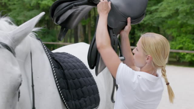 Two women tacking up a white horse