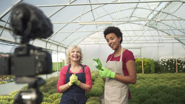 two women vlogging in a greenhouse - microphone stock videos & royalty-free footage