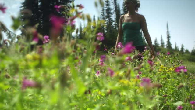 r/f la ms pan two women walking and sitting on meadow, garibaldi provincial park, squamish, british columbia, canada - garibaldi park stock videos & royalty-free footage