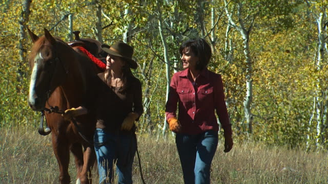 two women with a horse - altri spezzoni di questa ripresa 1139 video stock e b–roll