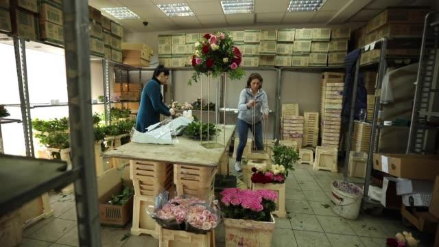 vídeos de stock e filmes b-roll de two women working in flower in workshop - florista