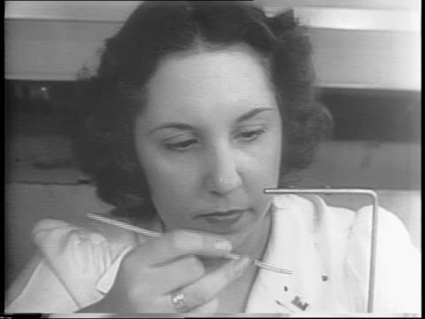 two women working with spiders in a laboratory / close up of a black widow spider being placed in a jar / close up of a woman's hands placing a fly... - widow stock videos and b-roll footage