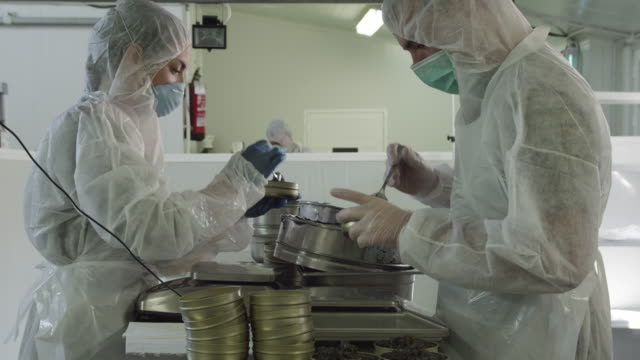 two workers wearing protective clothing filling caviar in tins in caviar production facility, RED R3D 4K,4KMSTR