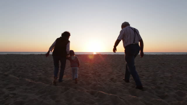 two year old boy walking with his grandparents on the beach in southern france. - schiebermütze stock-videos und b-roll-filmmaterial