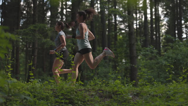 two young athletic women jogging on the road in forest - female friendship stock videos & royalty-free footage