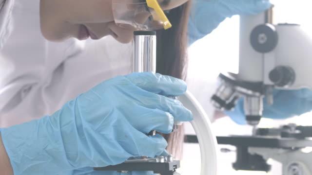 2 つの若い魅力的な女性を研究室での作業 - 感染症点の映像素材/bロール