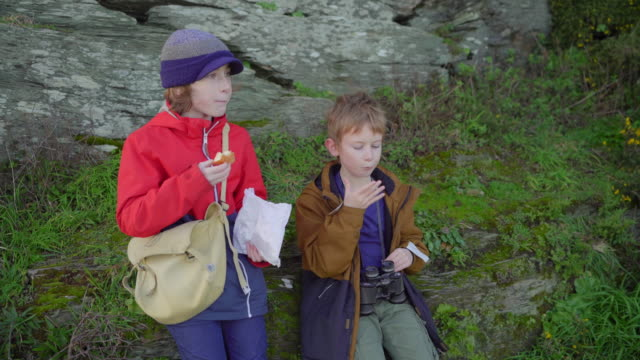 two young brothers sharing a snack of doughnuts while resting from a coastal walk - binoculars stock videos & royalty-free footage