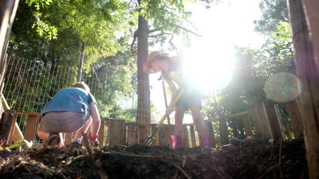two young kids working in the compost heap - digging stock videos & royalty-free footage