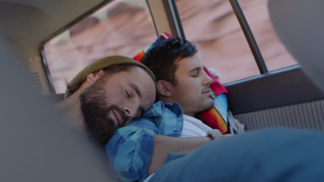 Two young men nap in the backseat of car on road trip.