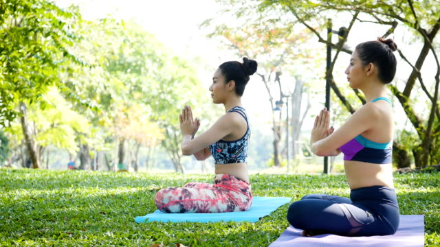 Two young women doing the yoga in morning park