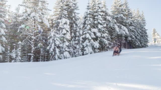 two young women having fun sledding on snow in bavarian alps - bavarian alps点の映像素材/bロール