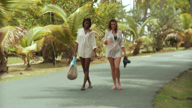 vídeos de stock e filmes b-roll de ws two young women in beachwear walking along palm tree-lined lane/ scarborough, tobago, trinidad and tobago - mala de ombro