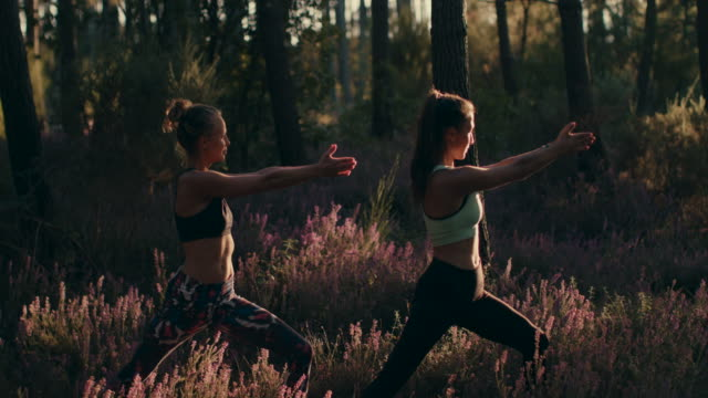 two young women practicing yoga at sunrise in the forest in the south of france. - legs apart stock videos & royalty-free footage