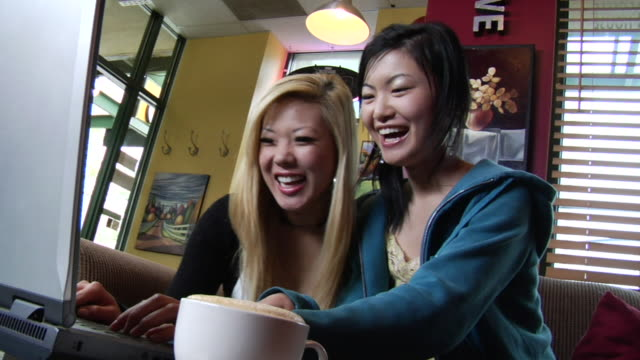 ms two young women sitting in coffee shop and using laptop/ vancouver, bc - 2007 stock videos & royalty-free footage