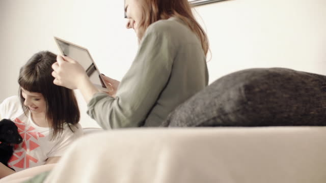 two young women sitting on sofa taking a photo of her dog - 写真を撮る点の映像素材/bロール