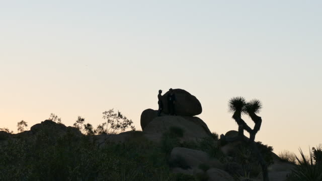 two young women standing on a hill in silhouette backlit by the pale blue sky in the desert joshua tree national park sunset mojave desert - rock climbing stock videos & royalty-free footage