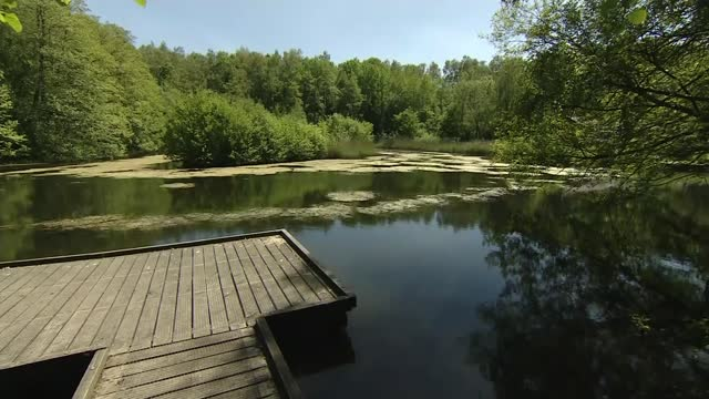 two-year-old boy dies after being pulled from lake; england: hampshire: swanwick lakes nature reserve: ext sign for swanwick lakes nature reserve... - lake stock videos & royalty-free footage