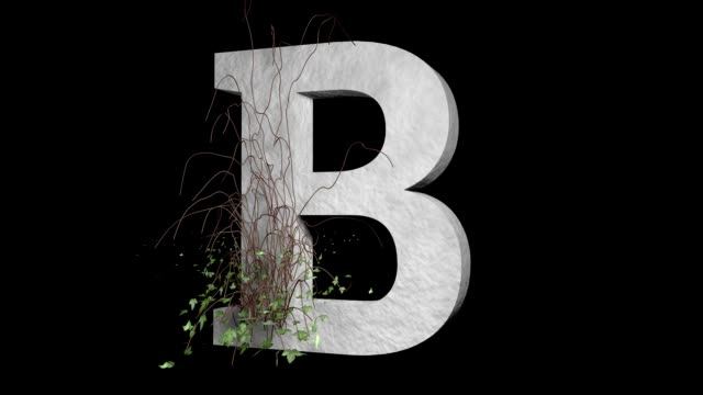 Type Letter B. Ivy Growing Stone Alphabet