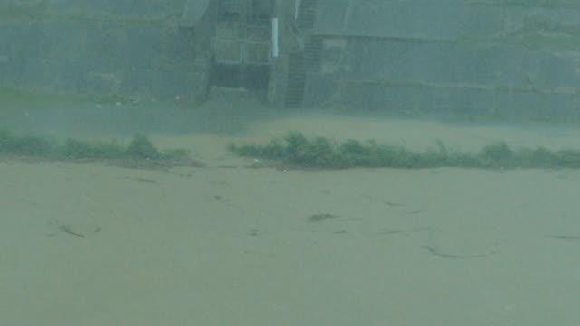 typhoon dujuan, taipei, taiwan - typhoon stock videos & royalty-free footage