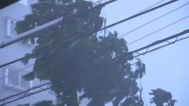typhoon goni torrential downpour - 集中豪雨点の映像素材/bロール