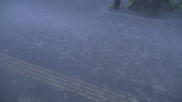 typhoon goni torrential downpour - strength点の映像素材/bロール