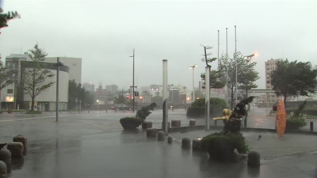 typhoon goni torrential downpour - typhoon stock videos and b-roll footage