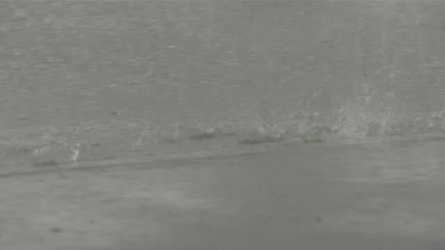 typhoon goni torrential downpour - fukuoka prefecture stock videos & royalty-free footage