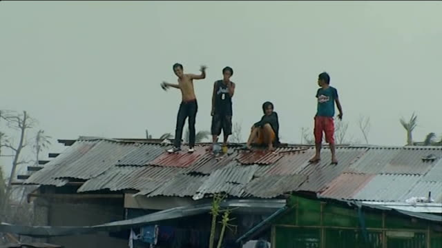 typhoon haiyan aftermath: day 5; rain high angle shot corrugated iron rooftops man lifting part of corrugated iron as repairs roofing young men... - stick plant part stock videos & royalty-free footage