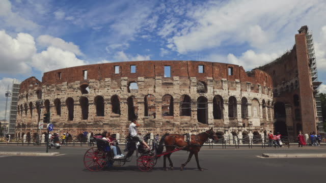 typical botticella horse under the coliseum of rome - cocchio video stock e b–roll