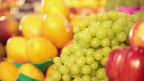 ms pan typical brazilian fruits / sao paulo, brazil - mango fruit stock videos & royalty-free footage