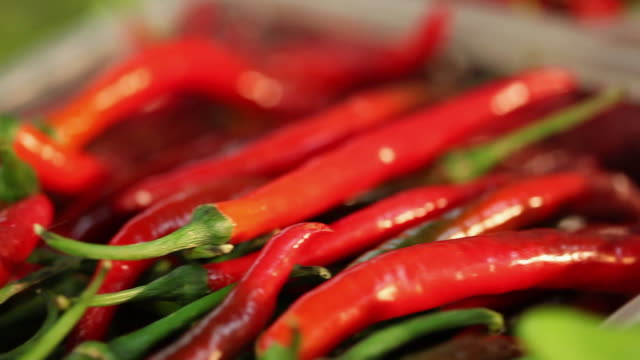 ms pan typical brazilian spices, flavorings and condiments / sao paulo, brazil - peperoncino video stock e b–roll