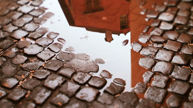 stockvideo's en b-roll-footage met typical sanpietrino roman road with water reflection - kassei