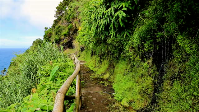 Typical trail along the coastline of the Azores