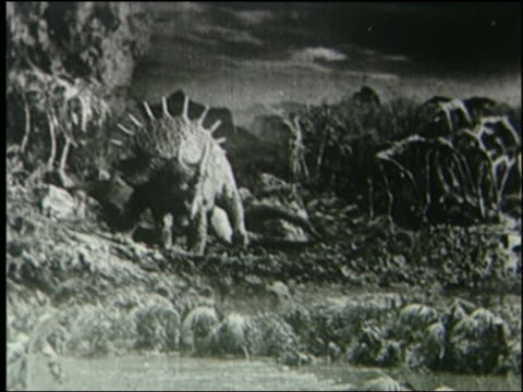 b/w tyrannosaurus fighting + killing triceratops in jungle - triceratops stock videos and b-roll footage