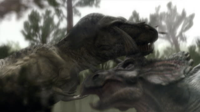A Tyrannosaurus Rex and a Triceratops fight in a forest  in a computer generated animation.